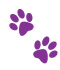 Paws Image